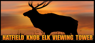Tennessee ElkVisitation Analysis by University of Tennessee
